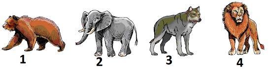 Тест Политоринг 3 класс вопросы и ответы