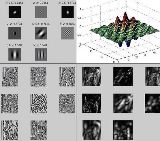 Фильтр Габора — линейный электронный фильтр
