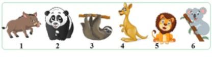 Задача №9 из 21 Выбрать сумчатых животных